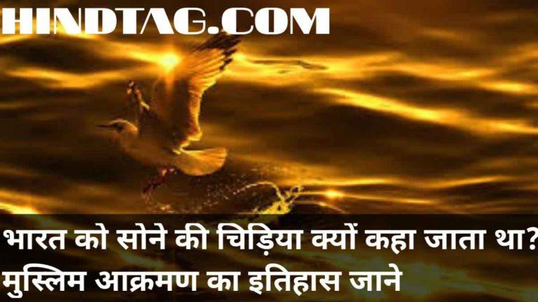 भारत को सोने की चिड़िया क्यों कहा जाता था ? मुस्लिम आक्रमण का इतिहास